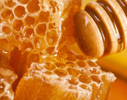 Dieta para o Cérebro Conheça os benefícios da geleia real