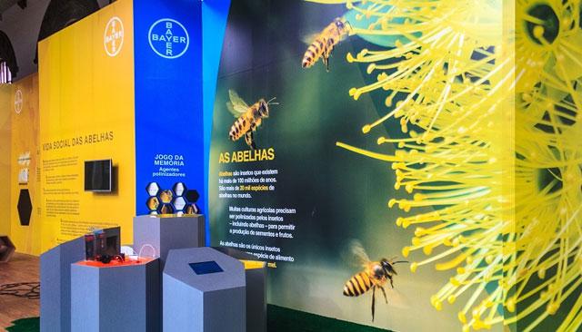 Mundo das Abelhas: ótimo programa para todos!